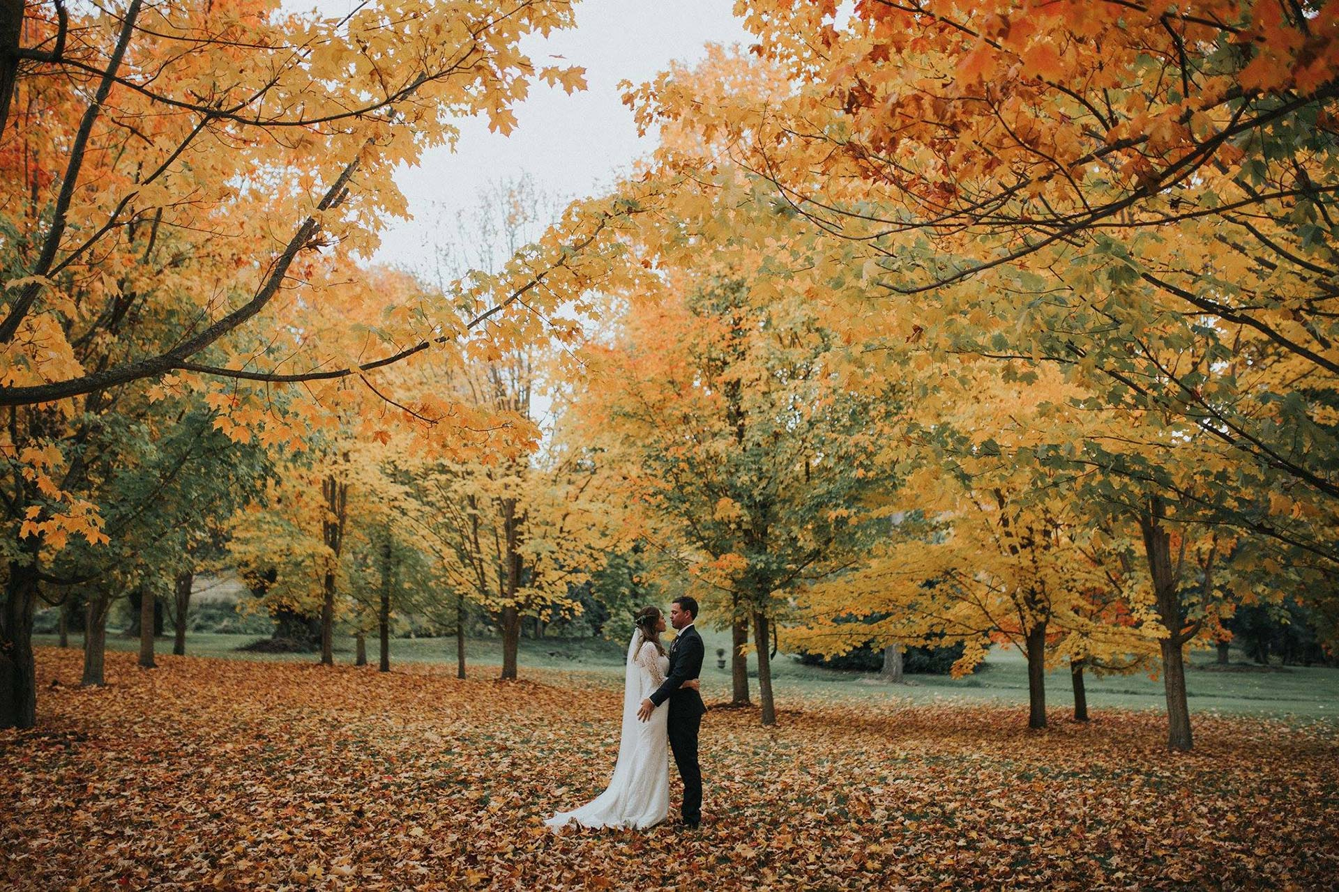 Casey & Aaron's Perfect Autumnal Wedding